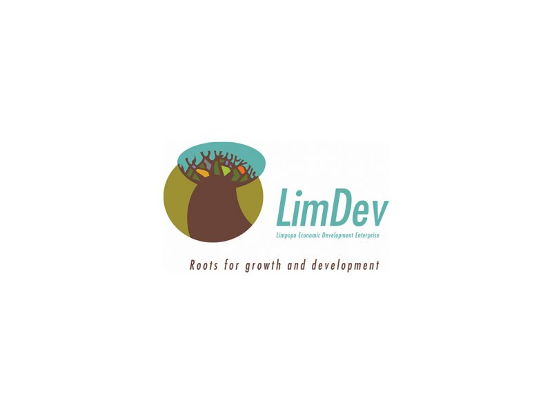 Logo Design | LimDev | Our Work | Odd Poppy