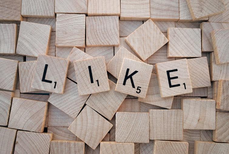 Marketing and Social Media Talk by Odd Poppy Creative at Magalies Business Forum